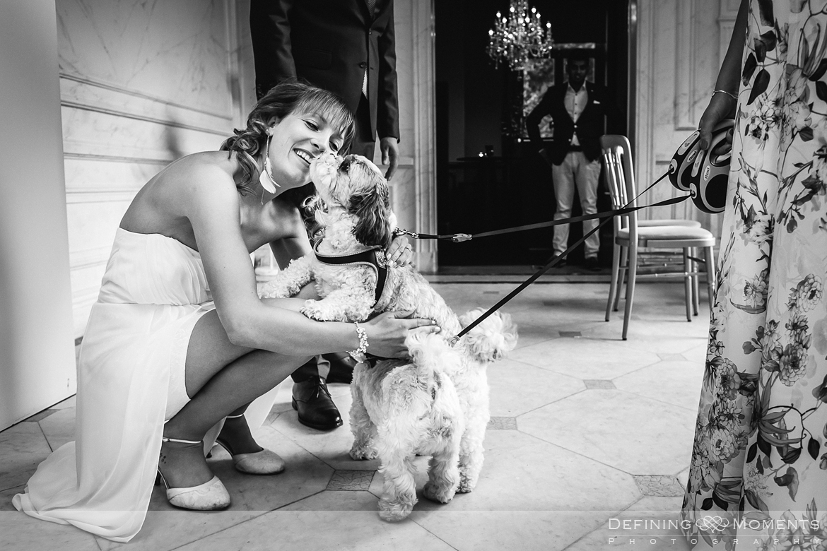surrey documentary wedding photographer documentary natural stylish contemporary wedding photography wedding reception bride dogs pets