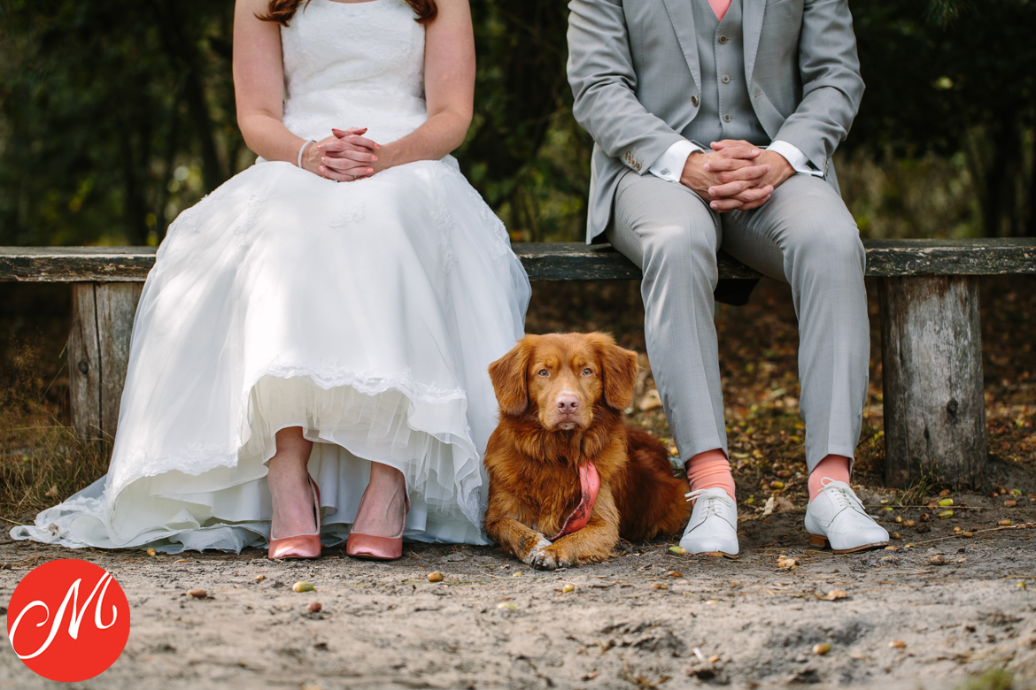 masters_of_wedding_photography_UK award photo bride groom ginger toller dog looking grumpy look salmon coloured shoes socks tie
